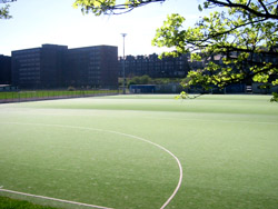 5-aside pitches at meadowbank
